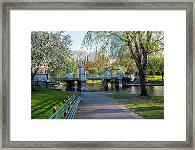 The Boston Public Garden In The Spring Boston Ma Framed Print
