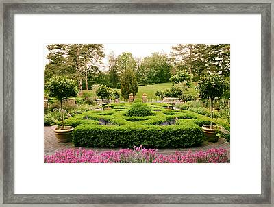 The Botanical Herb Garden Framed Print by Jessica Jenney