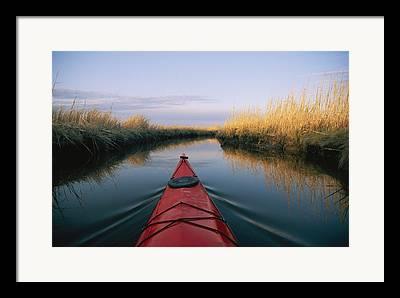 And Wetlands Framed Prints