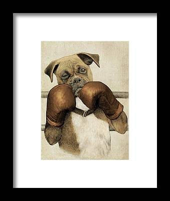 Boxer Framed Prints