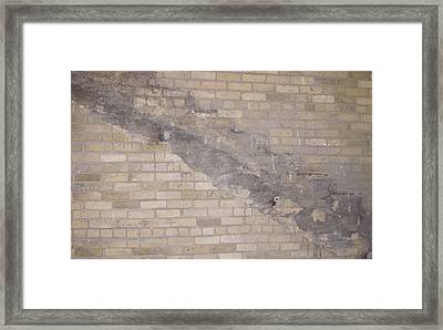 The Brick Wall-2 Framed Print by Janis Beauchamp