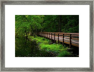 Framed Print featuring the photograph The Bridge At Wolfe Park by Karol Livote