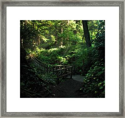 The Bridge Home Framed Print by Cliff Hawley