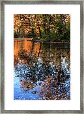 The Bright Colors Of Autumn, Quiet Evenings Are Reflected In The Waters Of The City Pond Framed Print