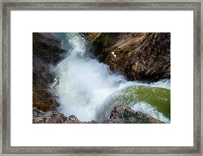 The Brink Of The Lower Falls Of The Yellowstone River Framed Print