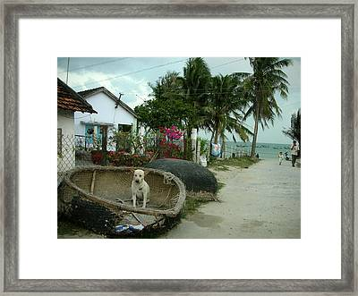 The Broken Old Boat Is My House Now Framed Print