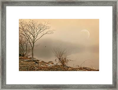 The Broken Promise Framed Print by Diana Angstadt