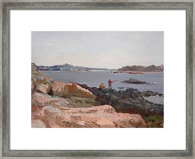 The Bronx Rocky Shore Framed Print by Ylli Haruni