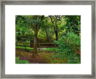 The Brook At Gibbon's Bridge Framed Print