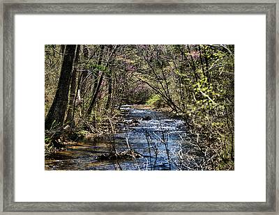 The Brook Framed Print