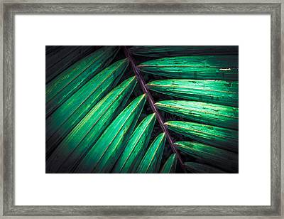 The Brush Strokes Framed Print