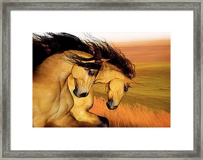 The Buckskins Framed Print