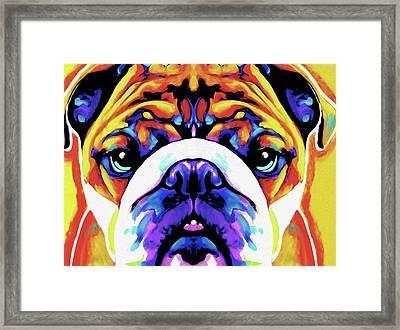 The Bulldog By Nixo Framed Print