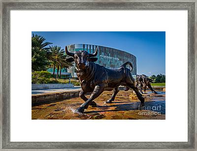 The Bulls Framed Print