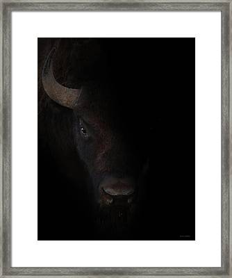 The Bullseye Framed Print