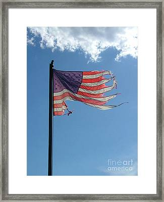 The Bush Legacy Framed Print by Gary Kaemmer