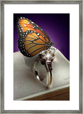 The Butterfly And The Engagement Ring Framed Print by Yuri Lev