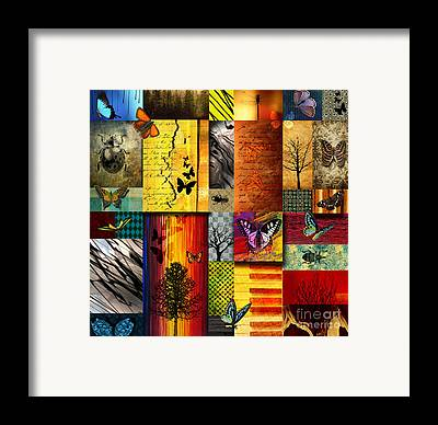 Colour Image Framed Prints