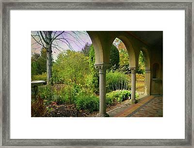 The Butterfly Garden Framed Print