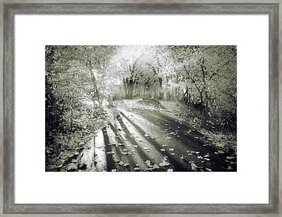 The Calm In Shadows And Light Framed Print