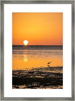 The Calm Side Framed Print
