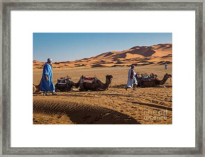 The Camel Driver Of The Beautiful Sahara Desert Framed Print by Rene Triay Photography