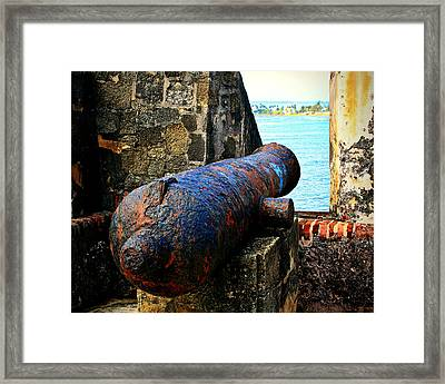 The Cannon  Framed Print