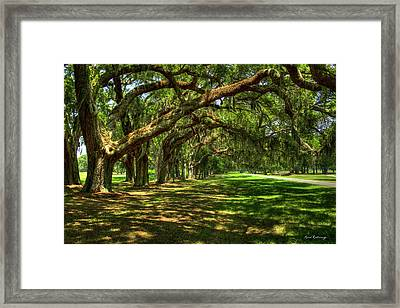 The Canopy Avenue Of Oaks St Simons Island Georgia Framed Print