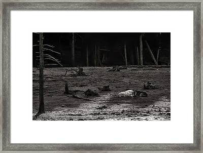 The Canyon Alphas B/w Framed Print