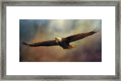 The Caretaker Bald Eagle Art Framed Print by Jai Johnson