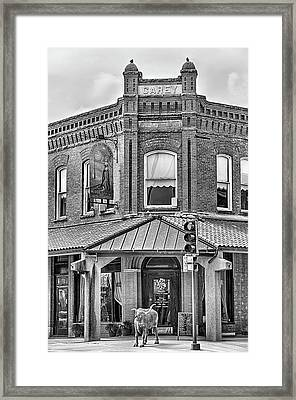 The Carey Building Black And White Framed Print by JC Findley