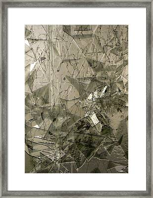 the 'Casuarina Understory' Framed Print by Sarah King