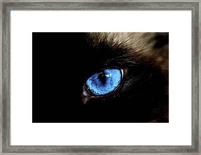 The Cat Eye Framed Print