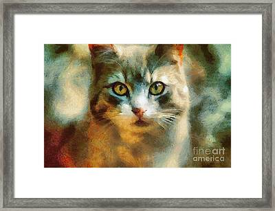 The Cat Eyes Framed Print