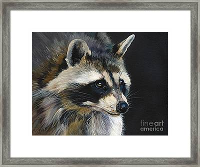 The Cat Food Bandit Framed Print