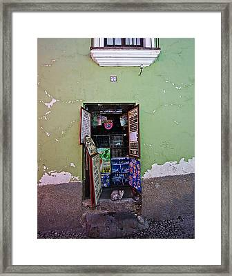 The Cat In The Doorway Framed Print