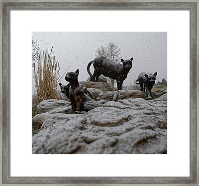 The Cats Framed Print