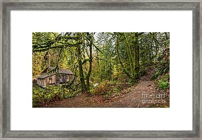 The Cedar Creek Grist Mill Trail Framed Print