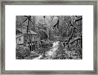 The Cedar Creek Mill Moss Framed Print