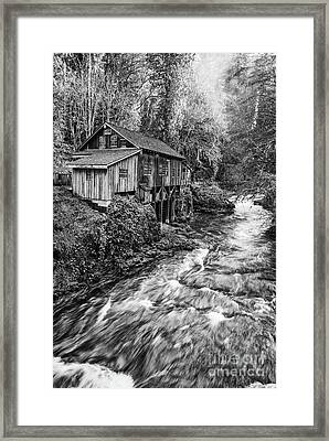 The Cedar Mill And Creek Framed Print