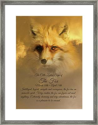 The Celtic Sign On The Fox Framed Print