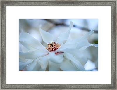 The Center Of Beauty Framed Print