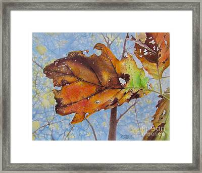 Changes Framed Print by Pamela Clements