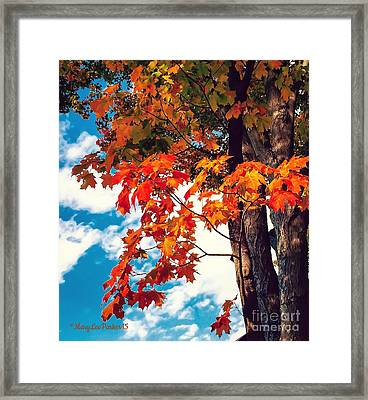 The  Changing  Framed Print by MaryLee Parker