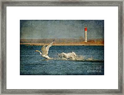 The Chase Is On Framed Print by Lois Bryan