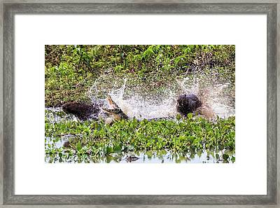 Framed Print featuring the photograph the Chase by Wade Aiken