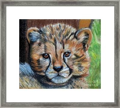 The Cheetah Cub Framed Print