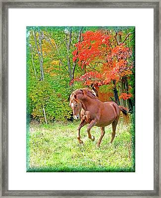 The Chestnut Spirit Framed Print