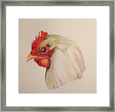 The Chicken Framed Print
