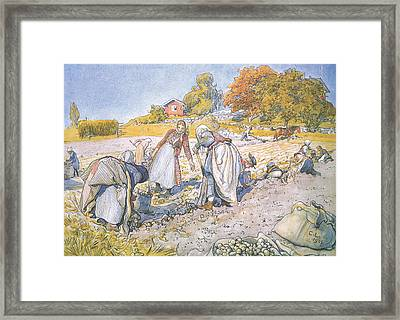 The Children Filled The Buckets And Baskets With Potatoes Framed Print by Carl Larsson